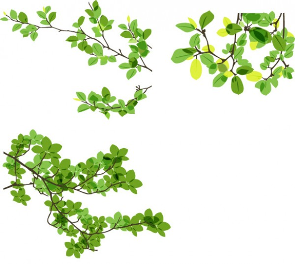 Green Leaves Vector Branches WeLoveSoLo