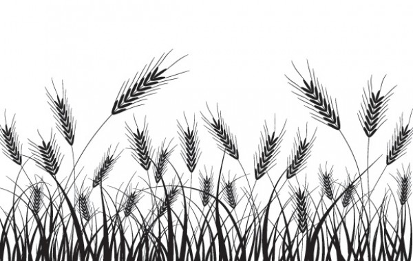 Wheat Field Silhouette Vector Background - WeLoveSoLo