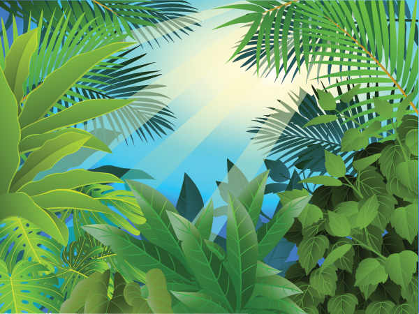 Green jungle background with palm fronds, green leaves and sunshine ...