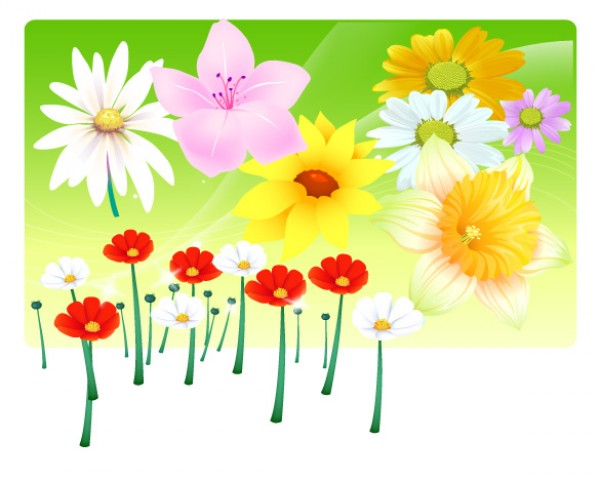 web Vectors vector graphic vector unique ultimate spring quality Photoshop pack original new modern illustrator illustration high quality garden fresh free vectors free download free flowers download design creative bouquet AI