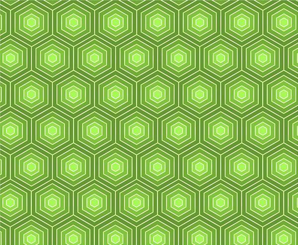 Bold Green Hexagon Turtle Pattern - WeLoveSoLo