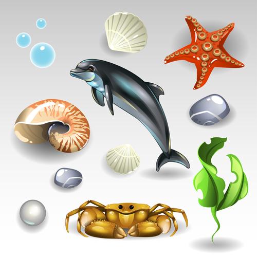 shining seashells seashell
