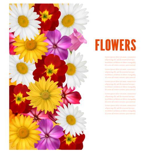 flower different colored background vector background