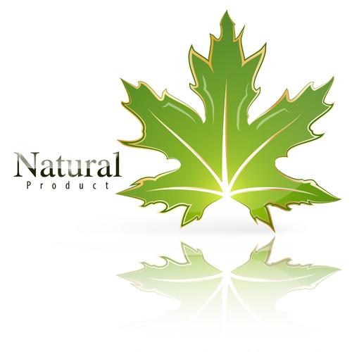shiny nature logo leaf green