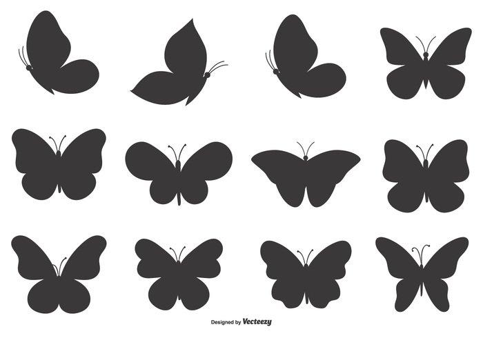 Butterfly Shape Set Welovesolo