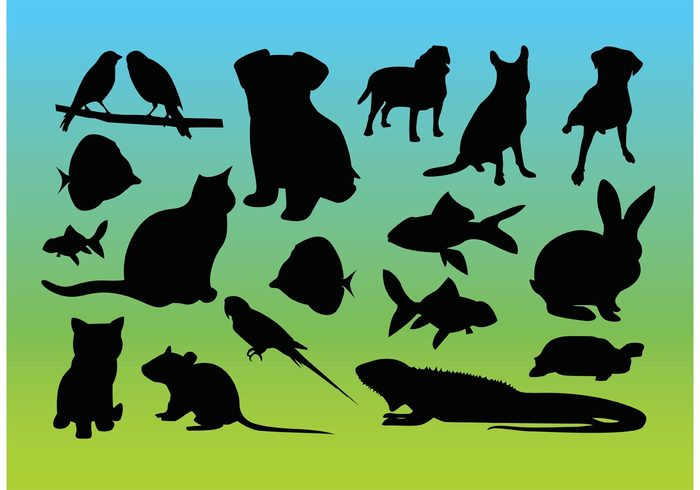 Zoo wildlife sky silhouette set sea reptile puppy pack nature Mammals kitten iguana gradient fishes fauna Domestic dog cool cat birds background animal