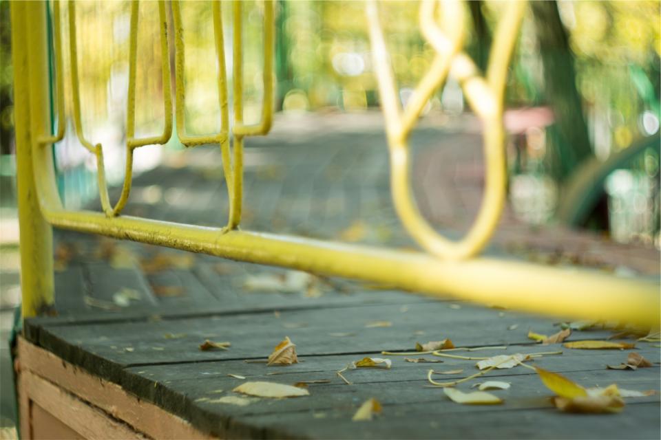 yellow wood railing path