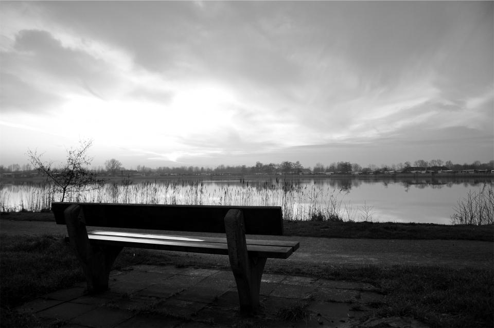 Wood Park Bench