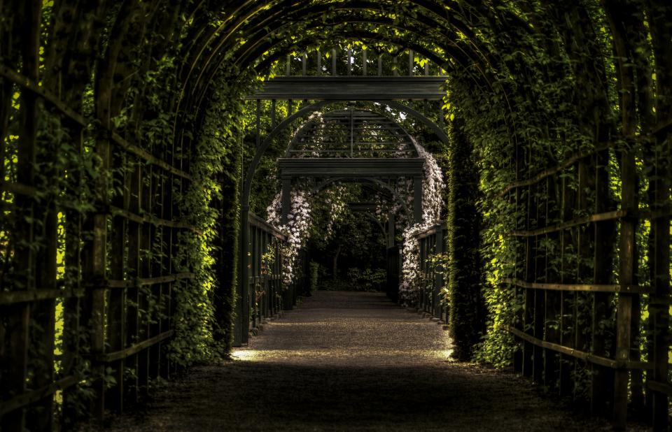 vines Prinsentuin leaves garden arches