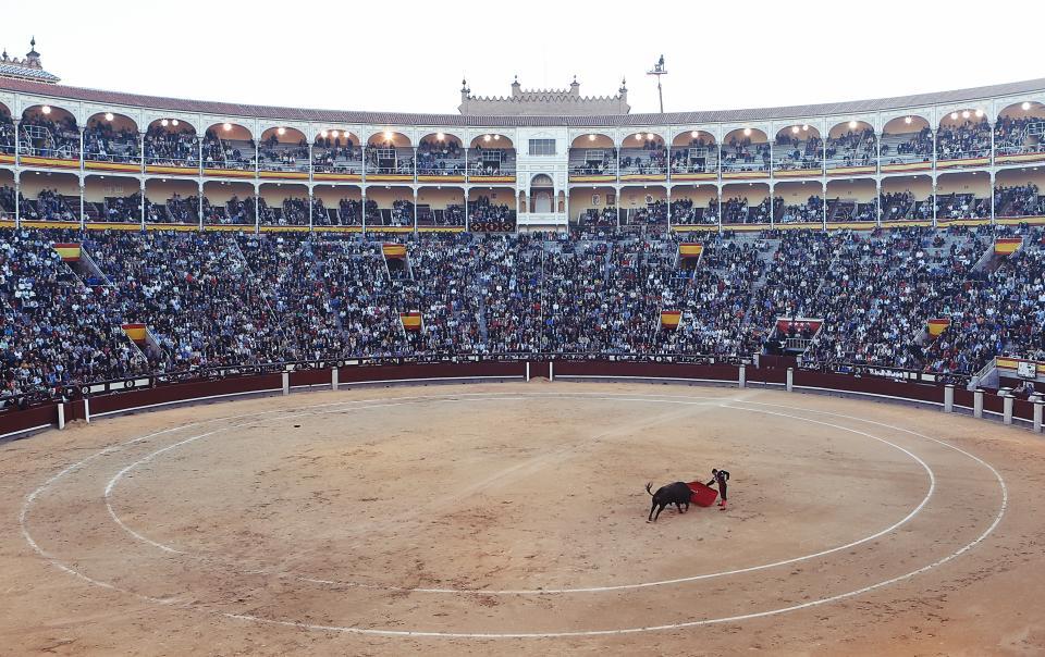 torero stadium spectators Spain ring red matador Madrid flag crowd circle cape bullfighter