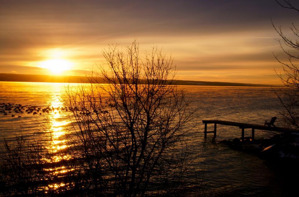 water trees sunset sky lake dock birds
