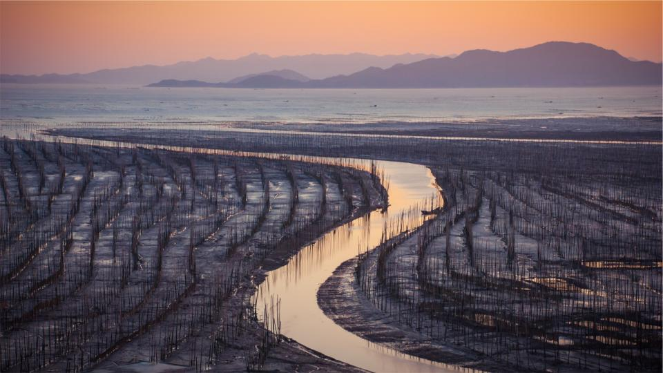water sunset seaweed river mountains fields dusk cultivation