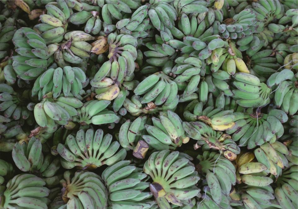 plantains Healthy fruits food bananas