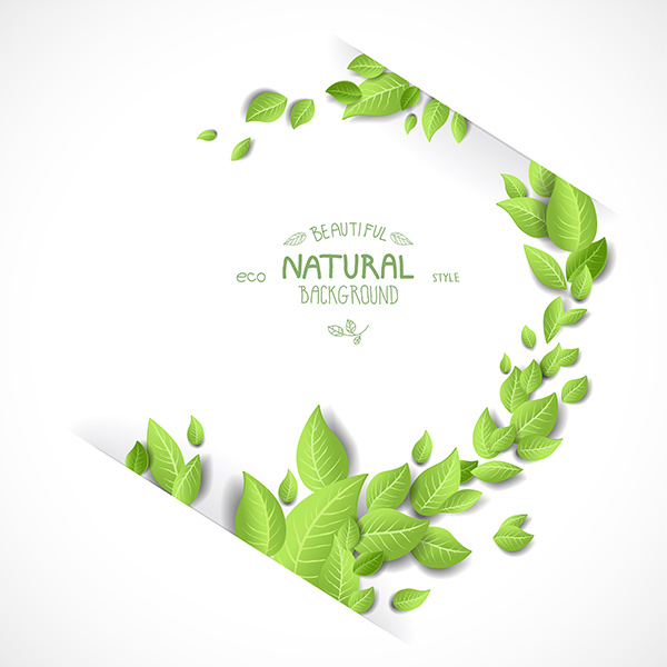 tree organic nature leaves green free frame eco branch background