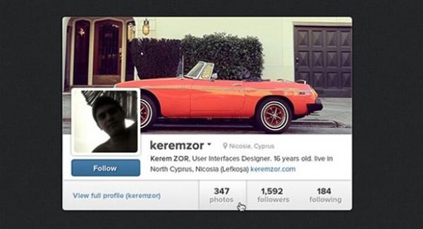 Cool Instagram Profile Widget PSD - WeLoveSoLo