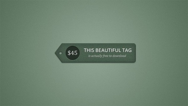 web unique ui elements ui tag stylish stitched simple quality price tag price original new modern leather label interface hi-res HD green fresh free download free fancy elements download detailed design creative clean