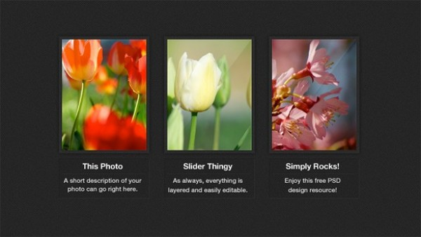 web unique ui elements ui thumbnails stylish simple quality photos photo gallery original new modern interface hi-res HD gallery fresh free download free elements download display detailed design creative clean