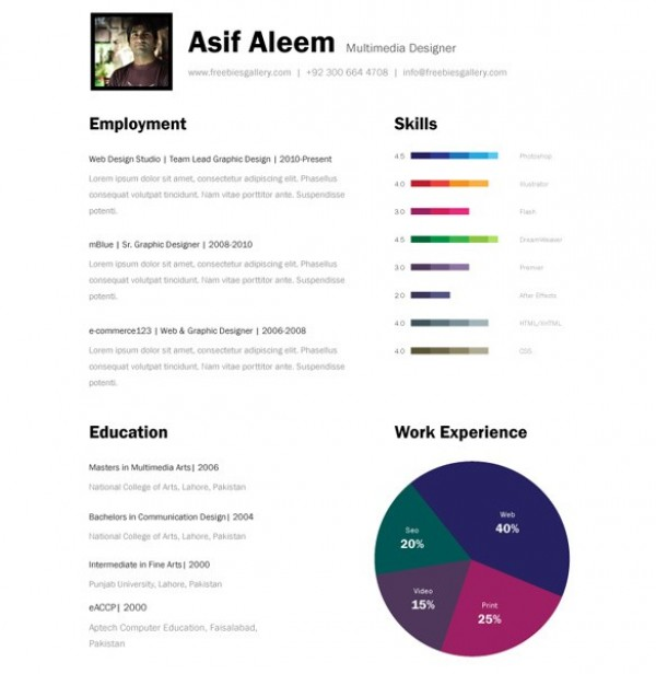 amazing bar graph one page resume template