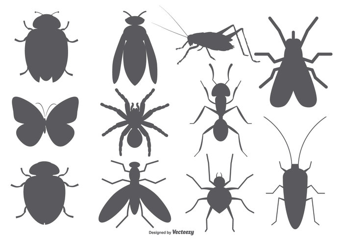 wings wildlife vintage vector shapes tribal Totem tentacles tattoo tarsus symbols style Stag beetle sketched silhouette signs shape set rustic retro outlined monochrome legs isolated insects insect shapes insect icon horns hand halloween graphic Gothic geometric fly Flies fashion elements drawing doodle design clip art clip character bugs bug branch beetle background art animal abstract