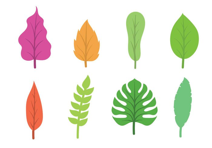 tree template symbol summer spring set season plant organic nature natural maple leaf hojas growth green garden fresh environment element eco decoration collection botany bio background