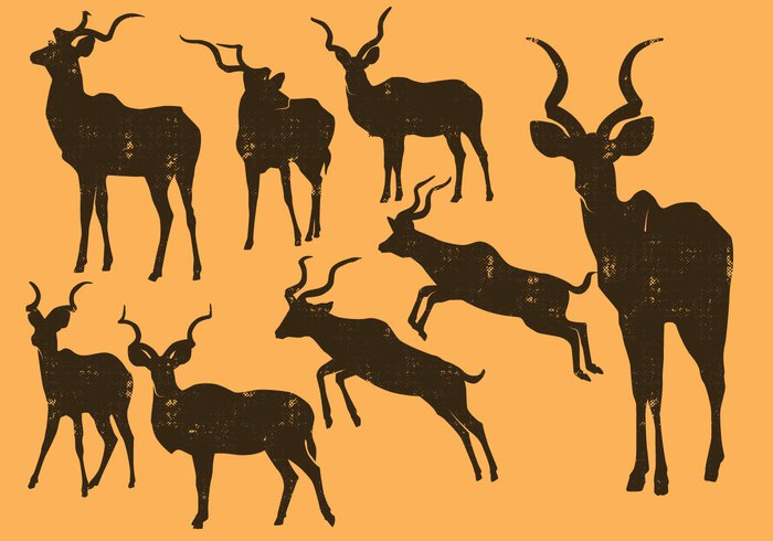Zoo wildlife wild vector symbol silhouette sign safari oryx object nature mammal male label kudu jumping isolated illustration icon horn design black Biology background Antelope animal african africa