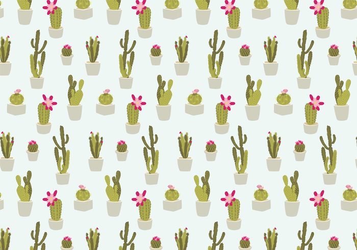 succulent Spiky seamless repeat Prickly potted plant pot plants plant pattern nature natural leaf Houseplant hand drawn garden flower desert pattern desert cactus desert cute plant cute cactus cactus pattern cactus botanical blooming bloom