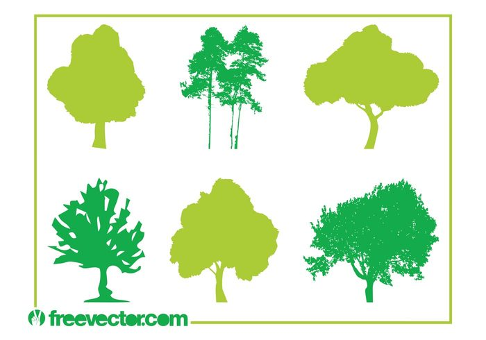 trunks trees tree silhouettes plants nature leaves flora Deciduous trees crowns