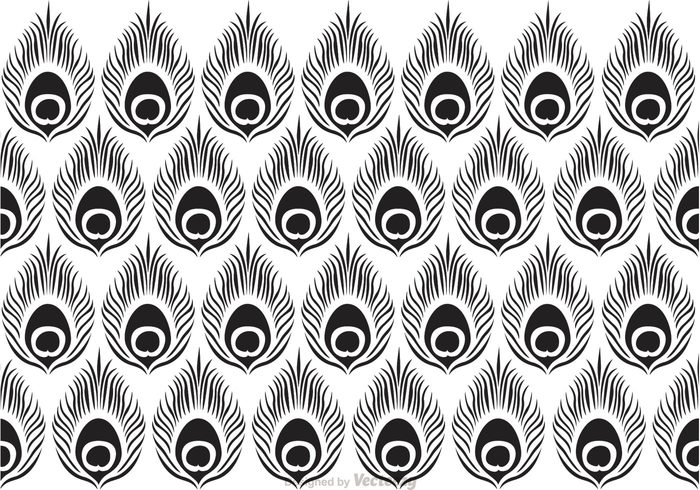 wrap wallpaper texture tail shape seamless scrap print peacock pattern peacock pattern ornate ornament modern line lace feather fabric decorative black background abstract