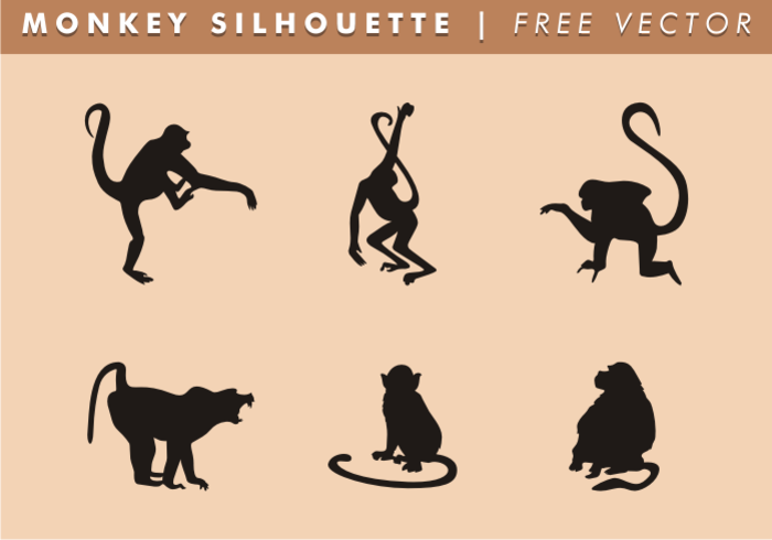 wild animals wild tail silhouette shapes Primates Primate nature monkey tail monkey silhouettes monkey silhouette monkey shapes monkey long tail hairy gorilla free monkey silhouettes curious animals curious climbing climber climb Chimpanzee black silhouettes black ape animals animal agile