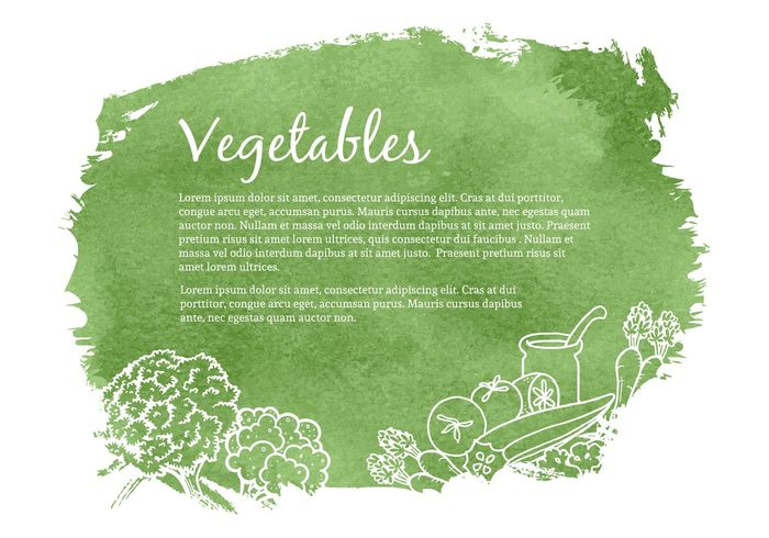 watercolor vintage vegetarian vegetable vector tomato template sketch set salad retro restaurant organic nature natural illustration Healthy health green garden fresh food farm drawn drawing Diet design Cucumber cooking collection carrot broccoli isolated banner background art agriculture