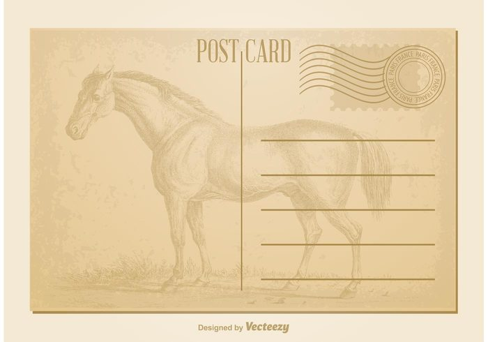 worn Vintage Style vintage postcard vintage horse vintage card vintage travel texture symbol stamp space sign send retro postcard postal postage post paper old note message mail horse grungy grunge faded Correspondence copy communication color cardboard card brown blank background antique aged address abstract