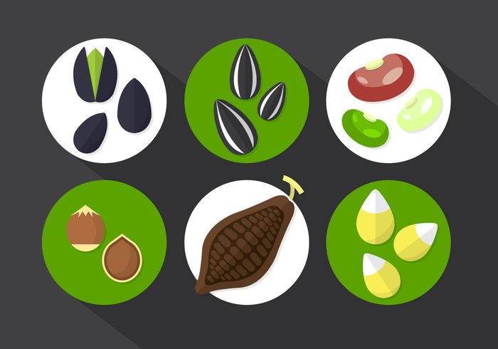 vintage tropical taste symbol sweet sticker stamp set seed retro raw quality pod plant peel ornament organic nutrition nature natural leaf label isolated Ingredient illustration icon health gourmet fruit food flower exotic environment eat drawing Diet dessert delicious dark cooking Cocoa beans cocoa chocolate cartoon Cacao botany beans badge background america
