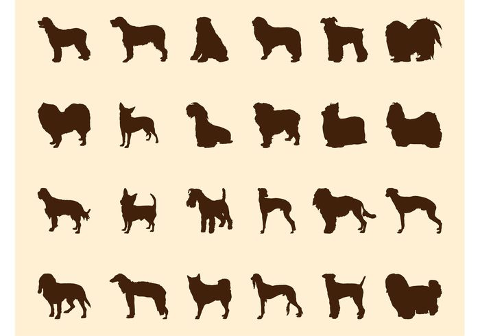walk sit silhouettes silhouette pet Hound fur dogs Dog breed dog Breeding breed animals animal