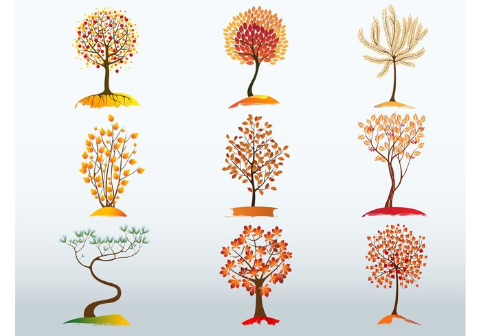 tree plants nature leaves leaf graphics Fall ecology Design pack clip art blossoms autumn agriculture