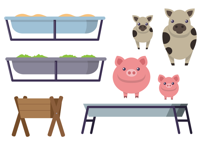 water Tub trough tank pigs piglet pig mammal hungry Hooves grass food feeding trough feeder feed farm animal empty cow animal agriculture