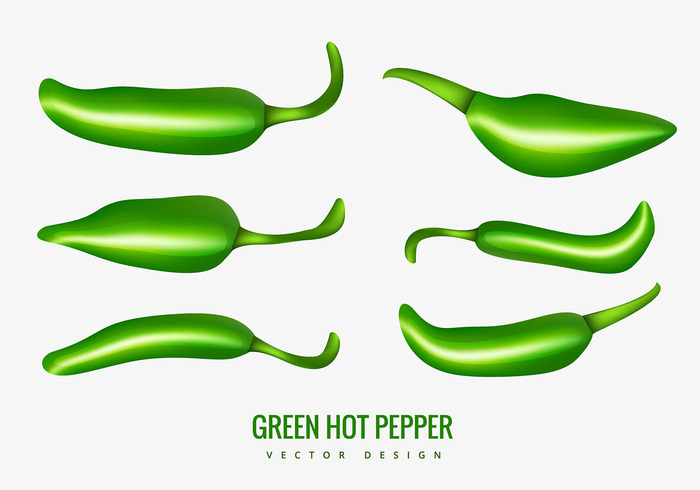 taste Spice plant pepper isolated hot pepper hot green hot peppers green hot pepper green food chilli