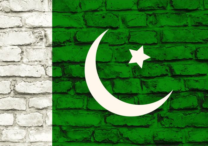world white wallpaper wall vintage used United torn texture symbol solid sign rough retro proportional pattern Patriotism patriotic Patriot pakistani pakistan flag Pakistan old nationality national nation Mortar material masonry grungy grunge flag drawing country color closeup close cement building brick banner background architecture abstract