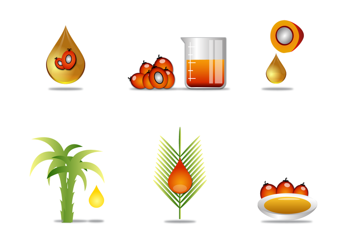tropical tree seed plant palm oil palm oil nut liquid leaf isolated industry fruits fresh food element drop drip commodity agriculture