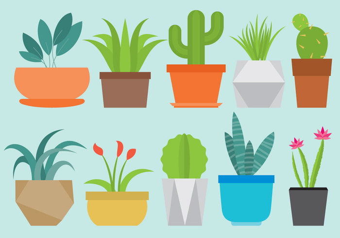 vector tropical thorn symbol summer style simple sign shelf set Prickly pot plant palm object nature natural maguey leaf isolated interior illustration icon Houseplant home growth green graphic garden flowerpot flower floral flora flat exotic element design decorative decoration cute collection cartoon cactus botany botanical blossom bloom background art Aloe agave