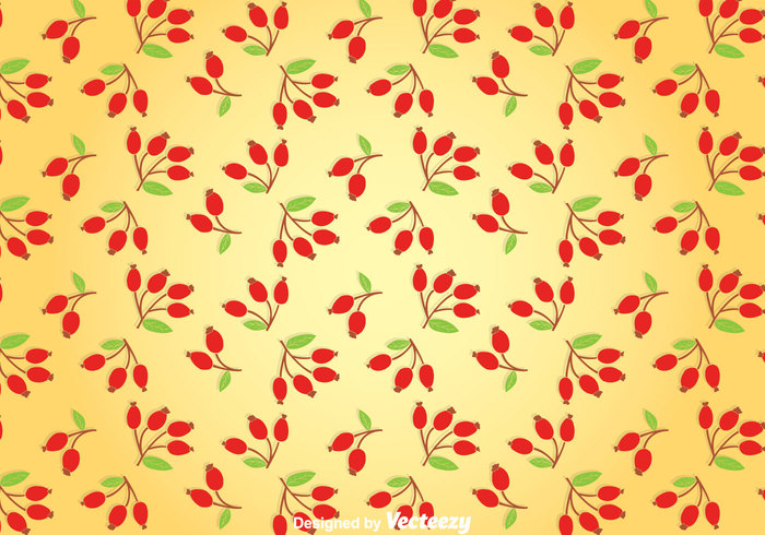 wallpaper rosehip rose plant pattern nature leaves leaf Berry background