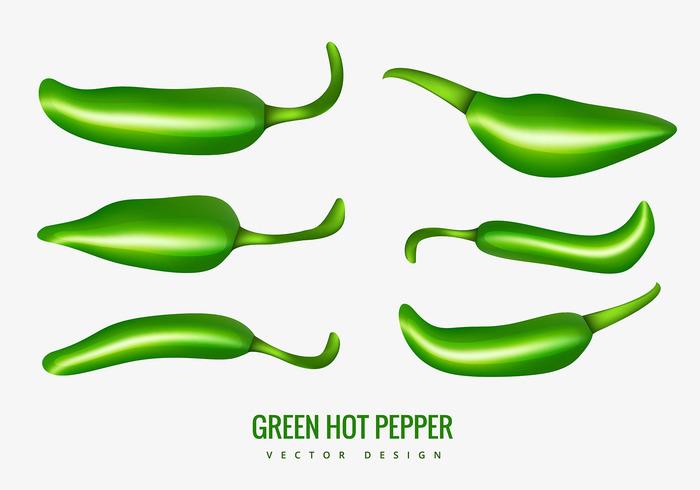 taste Spice plant pepper isolated hot pepper hot green hot peppers green hot pepper green food chilli