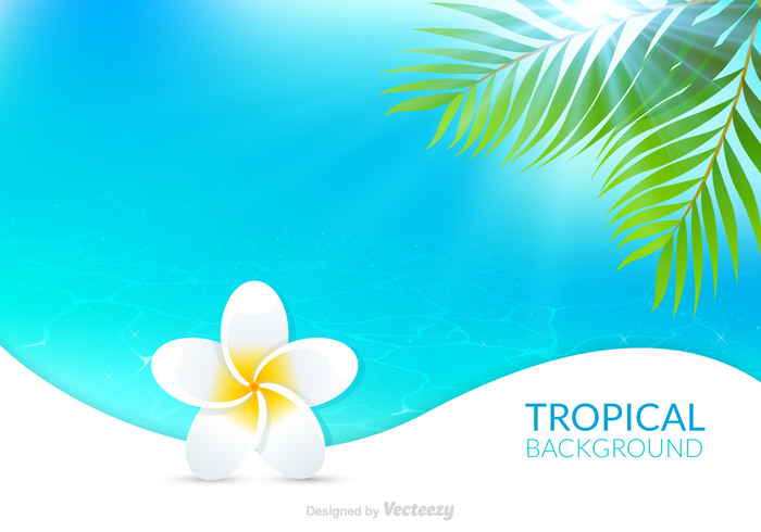 Enjoy Tropical Summer Holidays Backgrounds Vector 04 Free: Free Hawaiian Background Vector 118500