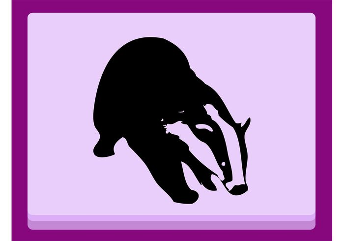 Zoo wildlife wilderness sports Sniffing silhouette outlines nature natural fur Badger vector animal