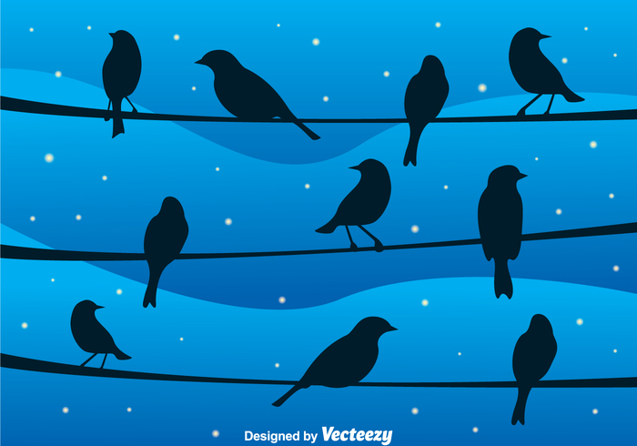 wing wallpaper star sky silhouette night line landscape group fly cable bright blue birds on a wire bird background