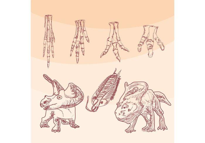 wild triceratops time t-rex sketch saber-toothed reptile prehistory prehistoric predator Paleontology old nature lizard jurassic iguanodon history historical historic head fossils excavations evolution dinosaur bone dinosaur danger creature bones Archeology animal ancient