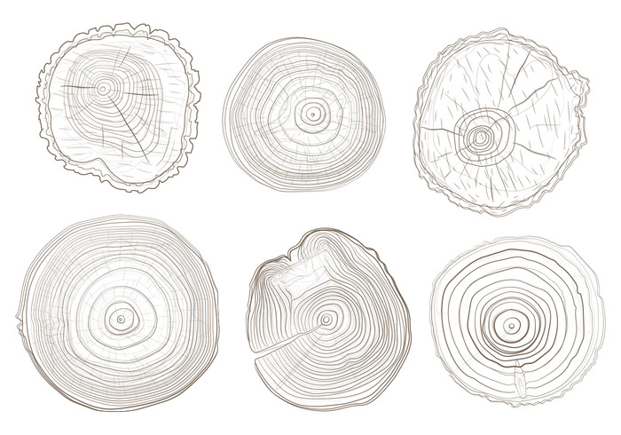 wooden wood white watercolor wallpaper trunk tree rings tree ring tree timber texture Surface stump striped Split slice shape section round rough ripple ring print plant pine paint organic Nobody nature natural material lumber Log line life isolated height handcraft growth fractal forest draw design cut CONCENTRIC circular circle brown background Annual Age