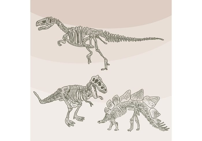 wild trilobite triceratops trex t-rex sketch saber-toothed reptile prehistory prehistoric predator Paleontology nature lizard jurassic history historical historic fossils Fear excavations evolution drawing dinosaur bone dinosaur danger creature bones Archeology animal ancient