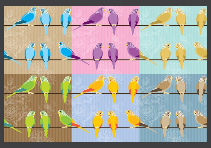 wing wildlife wild white warbler vector tile texture Textile standing spring sparrow Songbird sitting silhouette seamless repeat posing parrot paradise painting nature lovebird image illustration icon high group freedom flying flock feather fauna fashion fabric exotic drawing design common colorful color character cartoon budgies budgie bird beautiful beak background art animal
