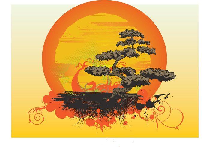 tropical tree sunset sun style small shape plant nature mini japan Houseplant Hobby gardening garden dwarf decoration botany Bonzai bonsai