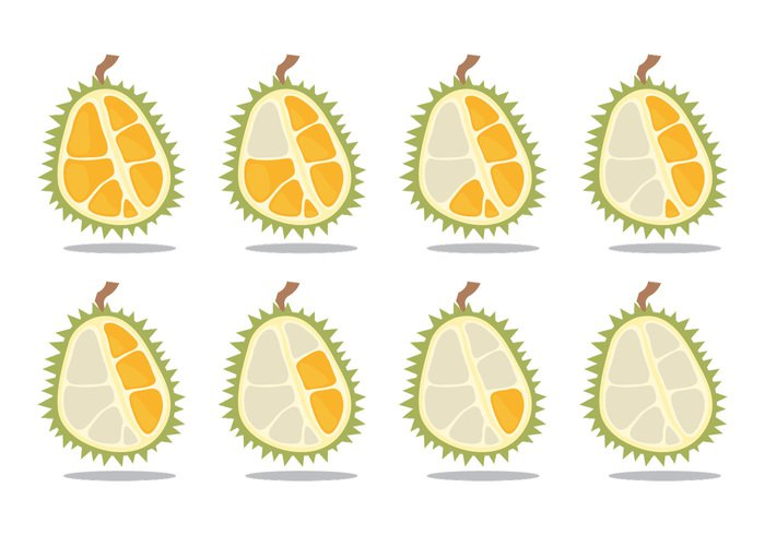 yellow white vector tropical time lapse symbol sweet summer strong snack smelly smell scent Ripe plant organic olive obesity nutrition nature natural isolated illustration Healthy green graphic fruit freshness fresh food fat exotic energy durian drawing design delicious color cartoon Calories background Asian asia art